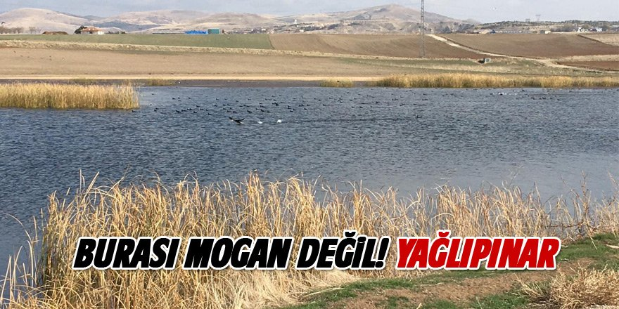 Mogan'a alternatif yeni göl